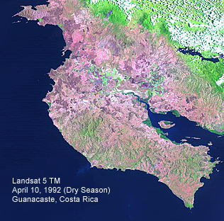 Bosque Tropical Seco de Costa Rica (Landsat Thematic Mapper)